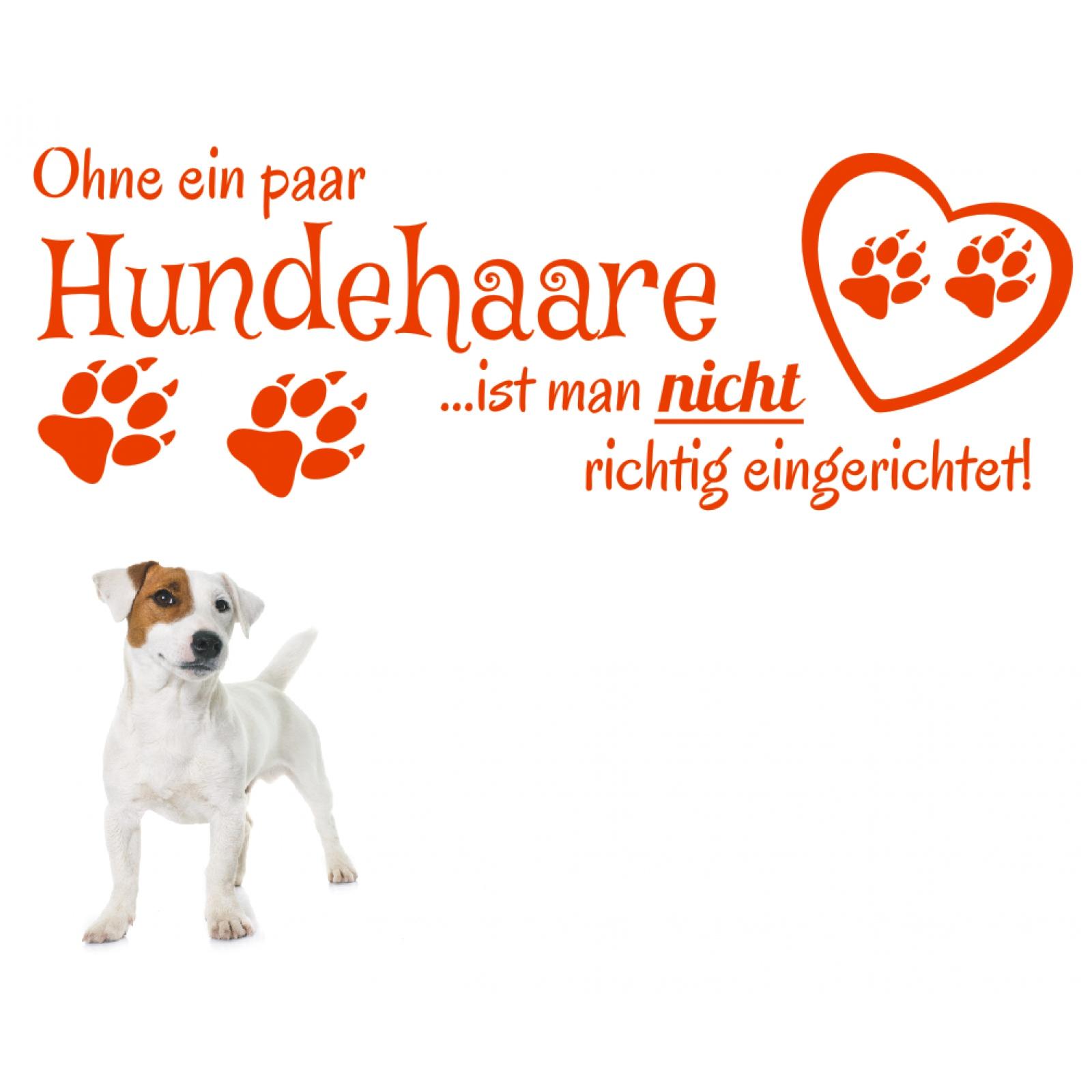 Spruch-WANDTATTOO-Ohne-ein-Hundehaare-Hund-Sticker-Wandaufkleber-Wandsticker-3 Indexbild 3