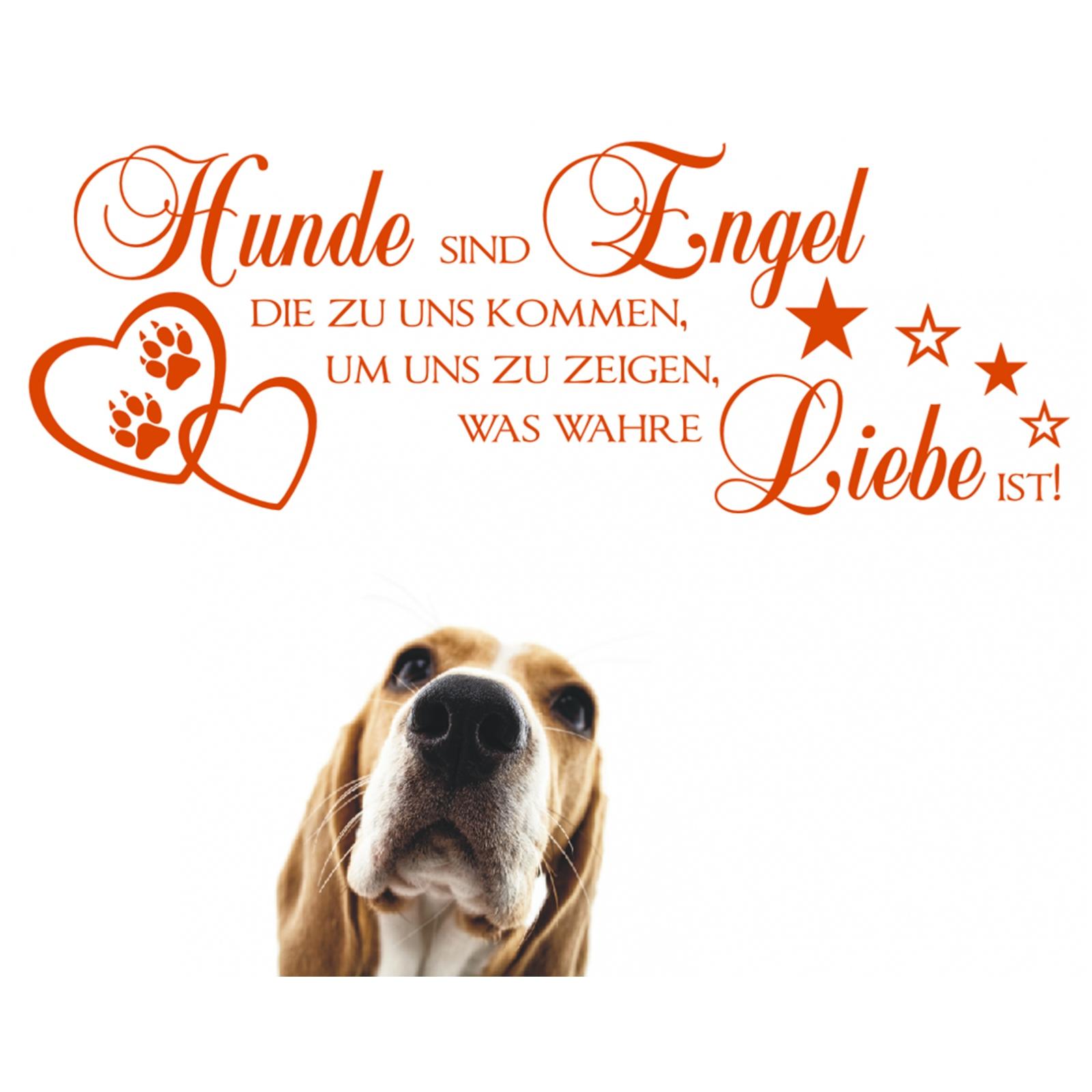 Wandtattoo-Spruch-Hunde-Engel-wahre-Liebe-Sticker-Wandaufkleber-Wandsticker-3 Indexbild 3