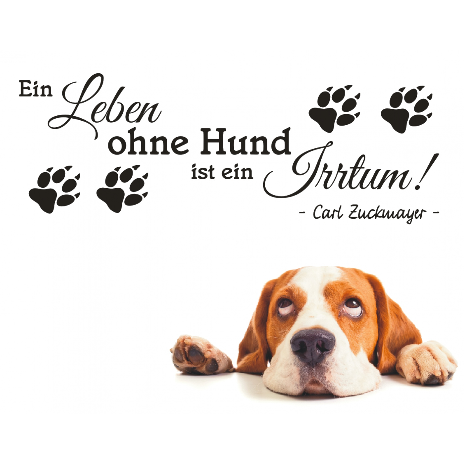 wandtattoo spruch ein leben ohne hund zitat wandsticker wandaufkleber sticker ebay. Black Bedroom Furniture Sets. Home Design Ideas